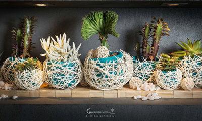 Création florales originales à Chinon