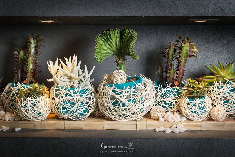 chlorophylle_fleurs_chinon_oceanic%2021