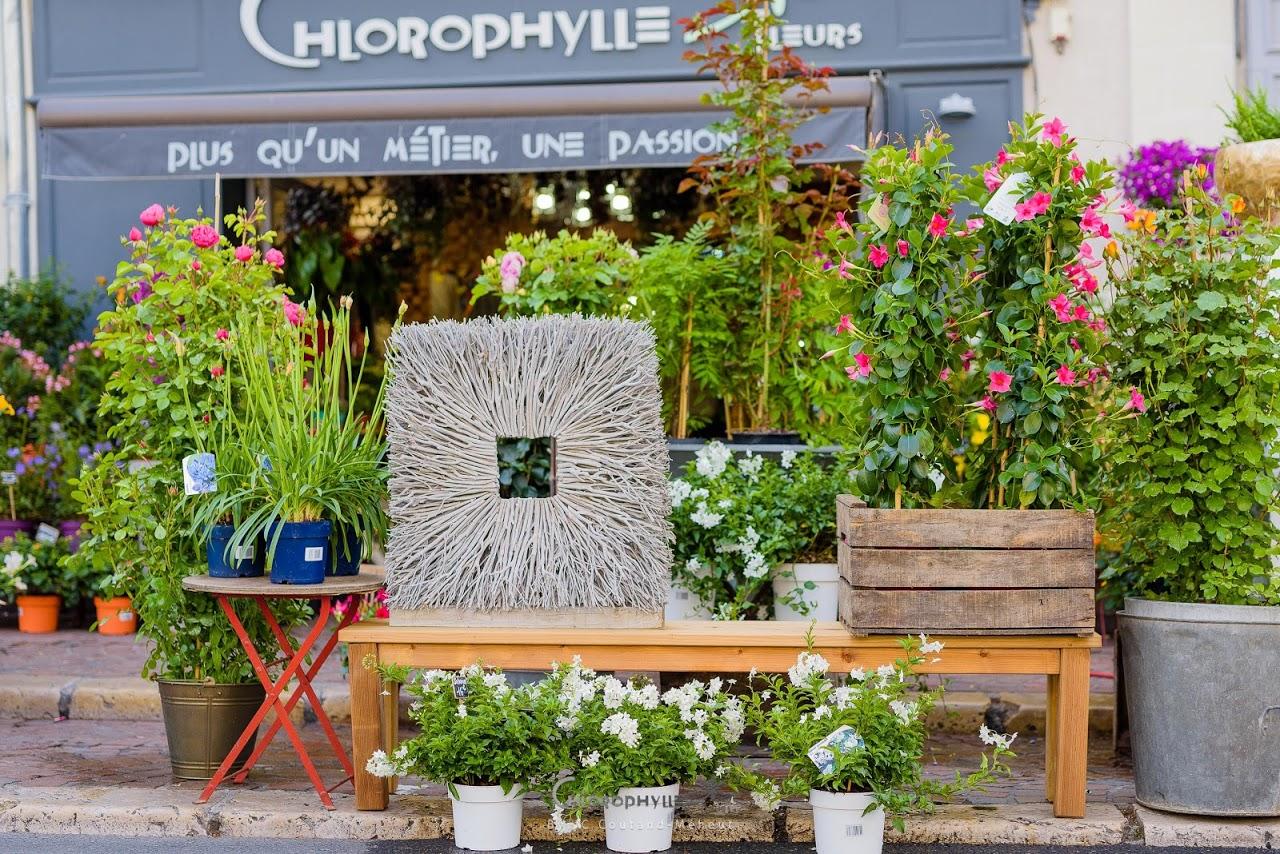 chlorophylle_fleurs_chinon-2
