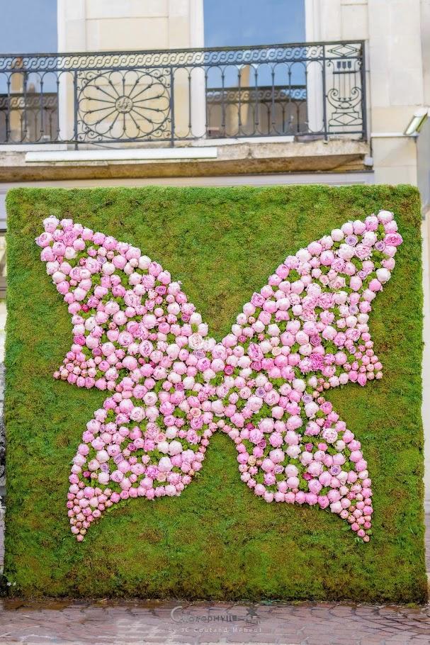 chlorophylle_fleurs_chinon-3