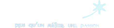 Logo fleuriste Chinon Chlorophylle
